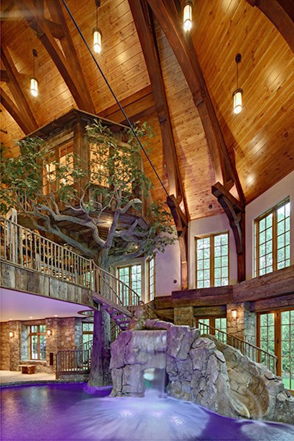 Lakefront Dream Home Lists With Indoor Treehouse PHOTOS OFF THE