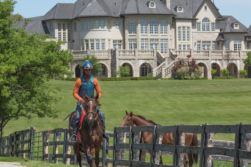 Equestrian-0218