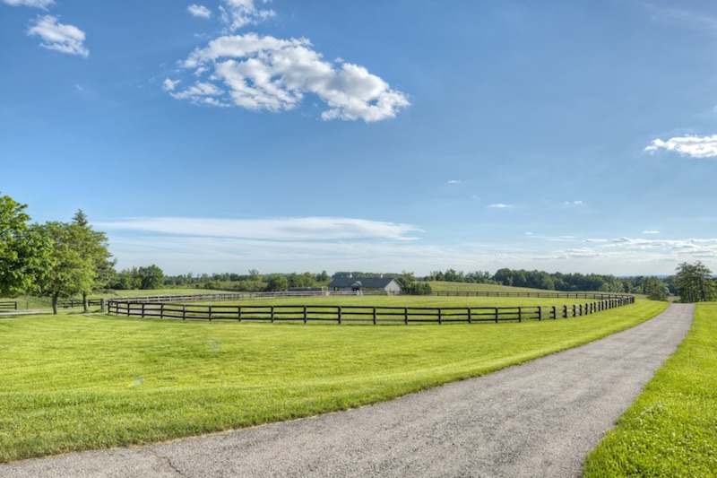 Equestrian-0358