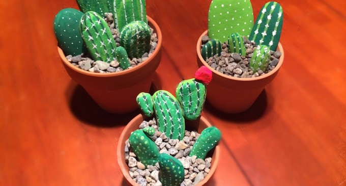 DIY Rock Cactus Gardens For Your Patio (PHOTOS)
