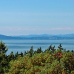Fairytale Cottage on 32-Acres Seeks $1.795-Million on San Juan Island (PHOTOS)