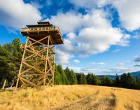 Couple Build Dream Home Atop 40-Foot-High Observation Tower (VIDEO)