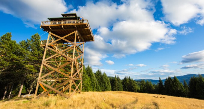 couple build dream home atop 40 foot high observation